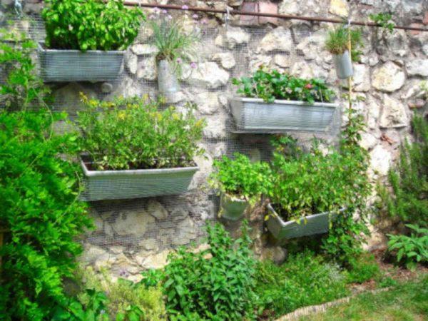 L'orto verticale in terrazzo